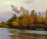 Сплав  с рыбалкой на реке Балыгычан (15 дней)
